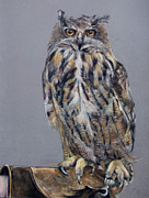 Eagle Pastels Metal Prints - Eagle Owl Metal Print by Tanya Patey