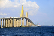 Sunshine Skyway Bridge Prints - Eagle under the Sunshine Print by David Lee Thompson