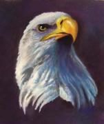 Bald Eagles Pastels Posters - Eagles head-2 Poster by Marcus Moller