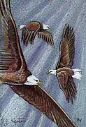 Eagles In Flight Print by John Keaton