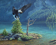 Talons Painting Originals - Eagles Landing by James Townsend