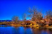 Stream Prints - Eaglewatch Lake II Print by David Patterson