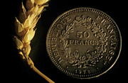 Comparing Posters - Ear of wheat next to a French fifty franc coin Poster by Sami Sarkis