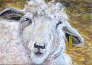 Lamb Pastels Prints - Ear Tag Print by Wendie Thompson