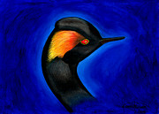 Integration Painting Prints - Eared Grebe Duck Print by Fanny Diaz