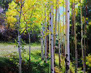 Aspen Tree Paintings - Early Autumn Aspen by Gary Kim