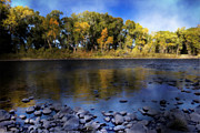 Rio Grande Prints - Early Fall at the Headwaters of the Rio Grande Print by Ellen Lacey