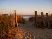Path To The Beach Photo Prints - Early Morning at Myrtle Beach SC Print by Susanne Van Hulst