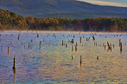 Arkansas Art - Early Morning Color of Lake Wilhelmina-Arkansas by Douglas Barnard