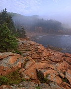 Acadia National Park Photos - Early Morning Fog  by Stephen  Vecchiotti