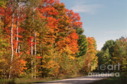 Autumn Country Road Posters - Early Morning in Door County Poster by Sandra Bronstein