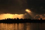 Diane Merkle - Early Morning Light
