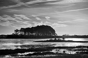 Salt Marsh Photos - Early Morning On Beach Drive IV by Steven Ainsworth