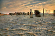 Fences Prints - Early Morning On The Dunes II Print by Steven Ainsworth