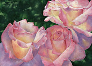 Oil Paints Posters - Early Morning Roses Poster by Sheryl Heatherly Hawkins