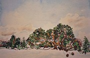 Wreaths Paintings - Early Snowfall  by Phyllis Barrett