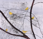 Branches Tapestries - Textiles - Early Spring 1 by Carolyn Doe