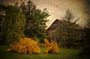 Barn Yard Photo Prints - Early Spring Print by Kathy Jennings