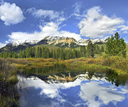 Idaho Scenery Posters - Easely Peak Reflected In Big Wood River Poster by Tim Fitzharris