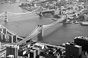 Greyscale Prints - East River bridges New York Print by Gary Eason