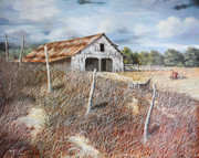 Hallmark Drawings Framed Prints - East Texas Barn Framed Print by Bob Hallmark