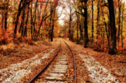 Indiana Autumn Digital Art Posters - Eastbound Poster by Sandy Keeton