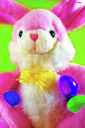 Goodies Prints - Easter Bunny 2 Print by Steve Ohlsen