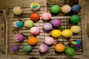 Drying Rack Framed Prints - Easter Eggs Drying On A Rack Framed Print by Tim Laman