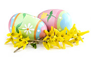 Easter Flowers Photo Prints - Easter eggs Print by Elena Elisseeva