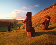 Environmental Originals - Easter Island Statues by David Nunuk