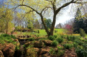 Byron Varvarigos - Easter Morning At Chanticleer
