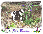 Puppies Mixed Media - Easter by Poni Trax