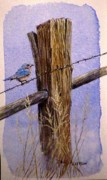 Lady In Lake Painting Posters - Eastern Blue Bird Poster by David Ackerson