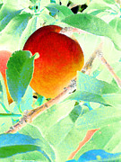 Peaches Framed Prints - Eat A Peach Framed Print by Louis Nugent