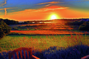 Duncan Pearson Prints - Eat Fire Spring Road Polpis Harbor Nantucket Print by Duncan Pearson