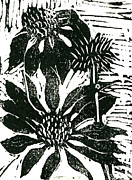 Lino Print Mixed Media Framed Prints - Echinacea block print Framed Print by Ellen Miffitt