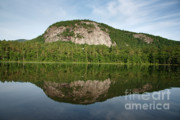 Ledge Prints - Echo Lake State Park - North Conway  New Hampshire USA Print by Erin Paul Donovan