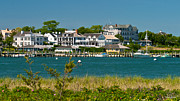 Vineyard Landscape Posters - Edgartown Harbor Marthas Vineyard Massachusetts Poster by Michelle Wiarda