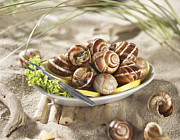 Salad Posters - Edible Snails With Salad And Lemon In Plate, Close Up Poster by Westend61
