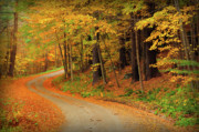 Autumn Foliage Prints - Edition 1 - Country Roads Print by Thomas Schoeller