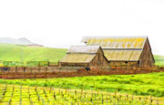 Barns Digital Art - Edna Valley Ranch by Patricia Stalter