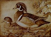 Ducks Pyrography - Edward and Mae by Jo Schwartz