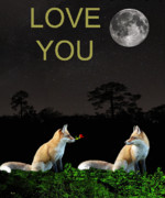 Greece Mixed Media Prints - Eftalou Foxes LOVE YOU Print by Eric Kempson