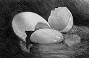 William Hay - Egg Study