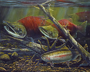 Salmon Paintings - Egg Thief by Scott Thompson