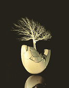 Manipulated Photography Posters - Egg Tree  Poster by Ann Powell