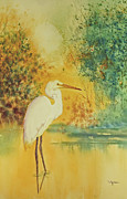 Loose Paintings - Egret by Diana  Tyson