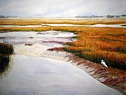 Marsh Bird Prints - Egret Haven Print by Shirley Braithwaite Hunt