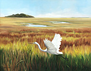 Glenda Cason - Egret In Flight
