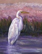 Reed Pastels Prints - Egret Print by Nancy w Rushing